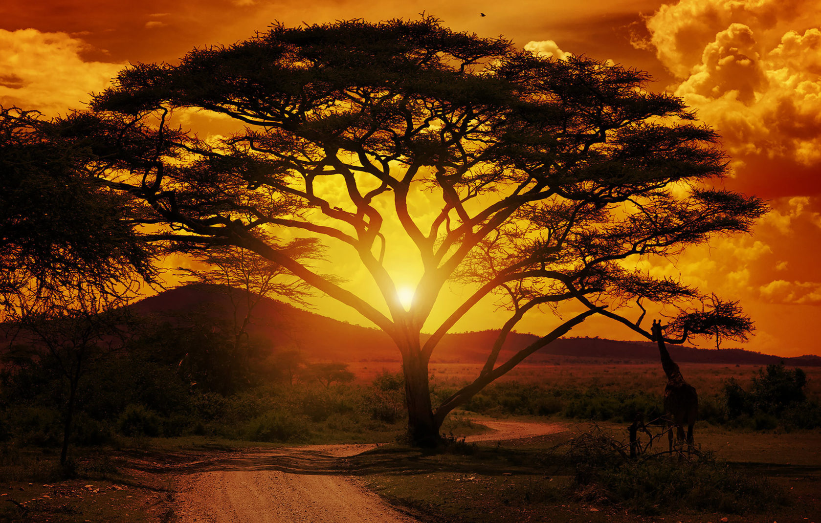 Destination Tanzania 01 Header