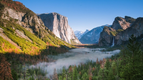 Yosemite Nat Park Tweak